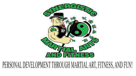 Synergistic Martial Arts and Fitness